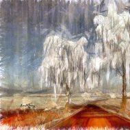 העץ הנדיב גם באורננז'