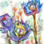 פרחים מפהקים